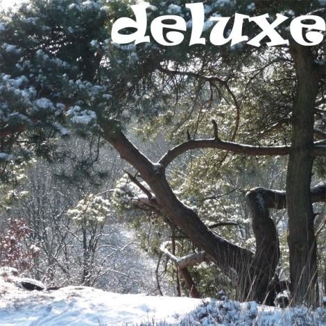 wintertheetasdeluxe_2